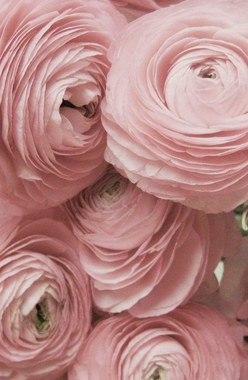 kwiaty_kolor_inspiracja_lampa_kafti_signworks_02_r