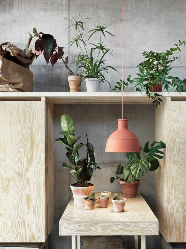 Skandynawskie wnętrze nie obędzie się bez zielonych dodatków - kwiaty, kaktusy, sukulenty, a wśród nich lampa Unfold Muuto w kolorze terakota, Pufa Design