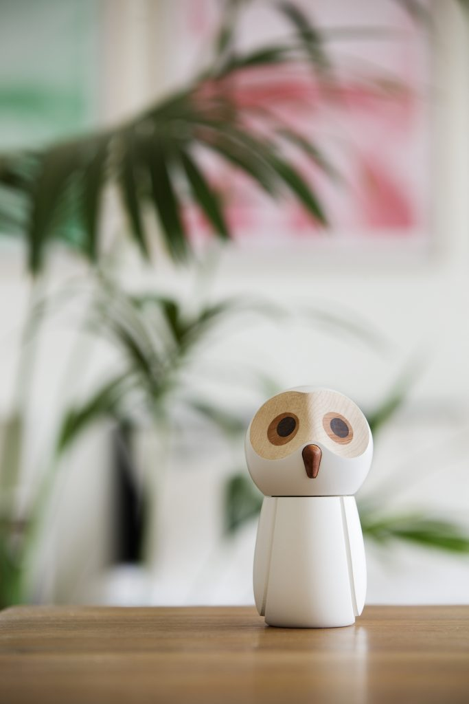 The Snowy Owl_shelves__web